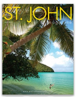 sjm cover issue 4